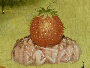 bosch strawberry